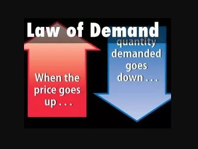 Law of Demand Statement Formula, Assumptions and Example